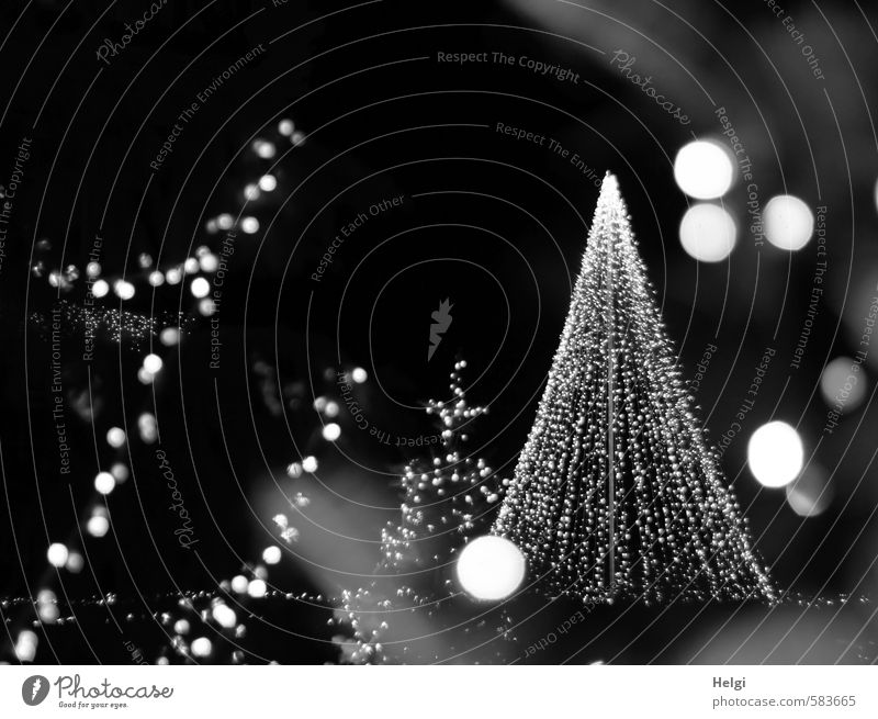 Christmas & Advent Beautiful White Calm Black Lighting Gray Feasts & Celebrations Moody Glittering Idyll Illuminate Design Stand Decoration Esthetic