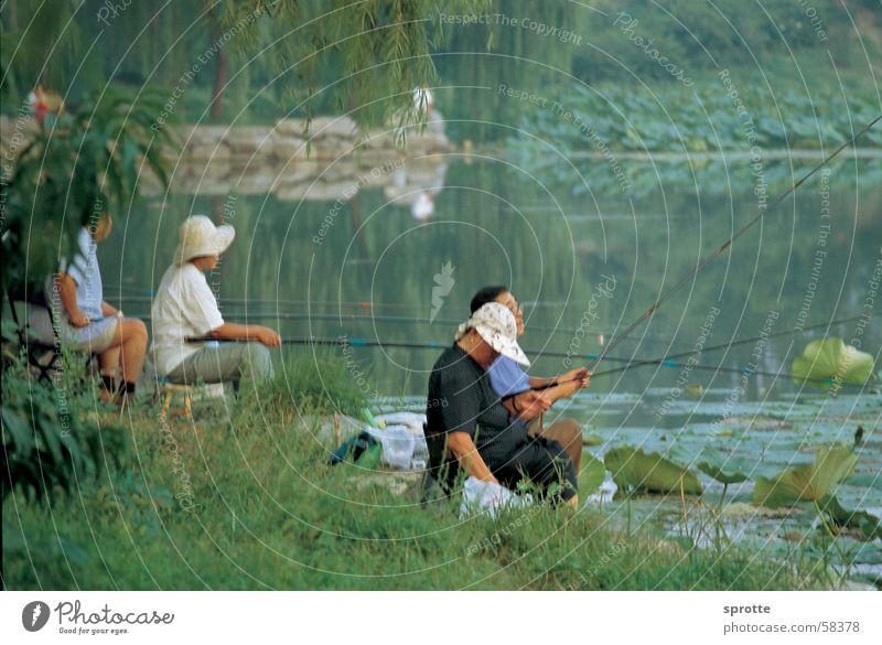 Chinese anglers in Beijing Summer Palace Angler China Summer palace Lake Calm Moody old summer palace