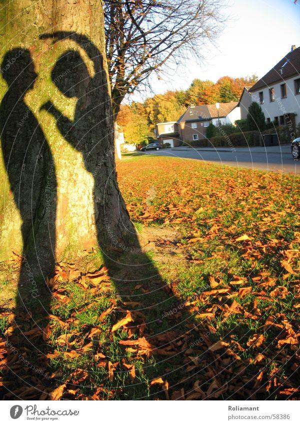 Shadow Warrior Art Lethargic Autumn Evening sun Fear