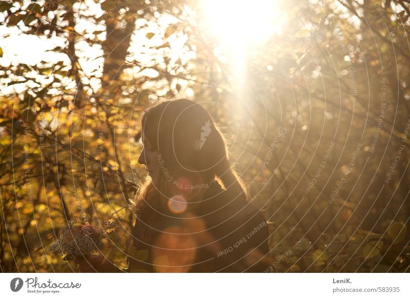 The Sun on my Back Young woman Youth (Young adults) Sunrise Sunset Sunlight Autumn Tree Forest Observe Think Free Warmth Emotions Moody Warm-heartedness Calm