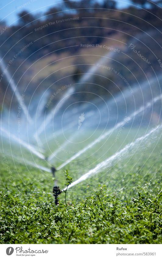 sprinklers Garden Gardening Farm Farmer Hay Irrigation Sprinkler system Lawn sprinkler garden sprinklers Hydroelectric  power plant Environment Landscape Water