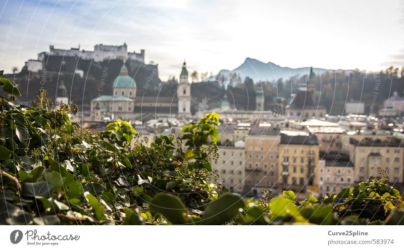 Salzburg Tourism City trip Mountain Town Capital city Old town Castle Friendliness Austria Light Warmth Building Colour photo Exterior shot Evening Blur