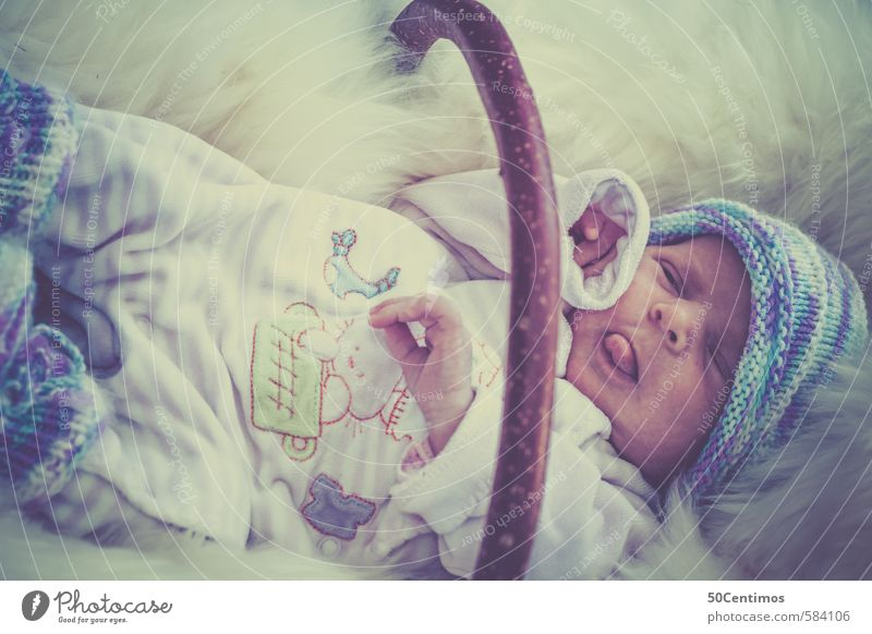Baby in basket on sheepskin Body 1 Human being 0 - 12 months Wood Sleep Scream Happy Natural Nerdy New Curiosity Cute Juicy Clean Blue Patient Calm Infancy