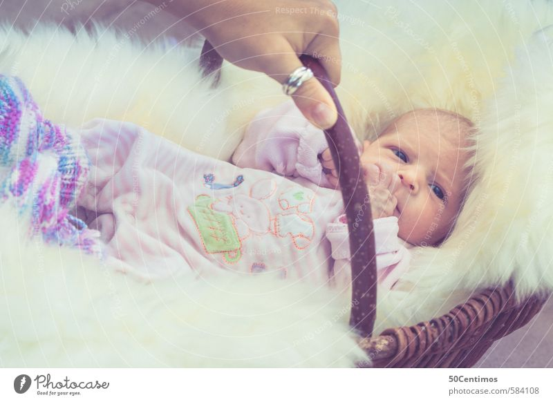 Human being Hand Calm Adults Wood Happy Body Contentment Infancy Wait Authentic Baby Happiness Cute Sleep Curiosity