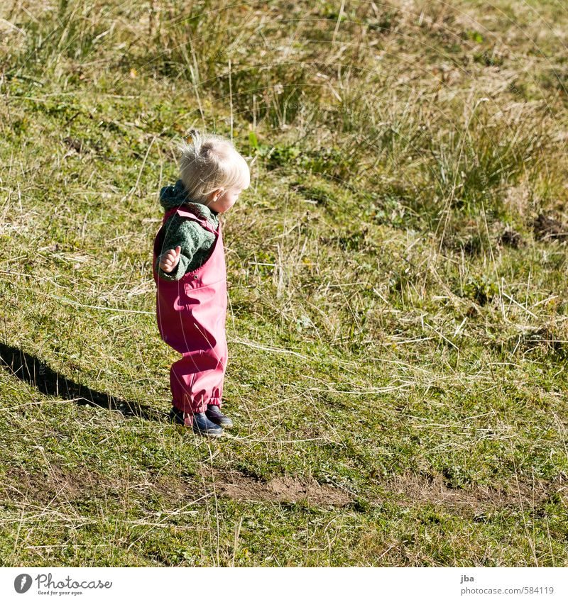 Human being Child Summer Girl Mountain Life Meadow Feminine Autumn Lanes & trails Grass Think Contentment Infancy Stand Hiking