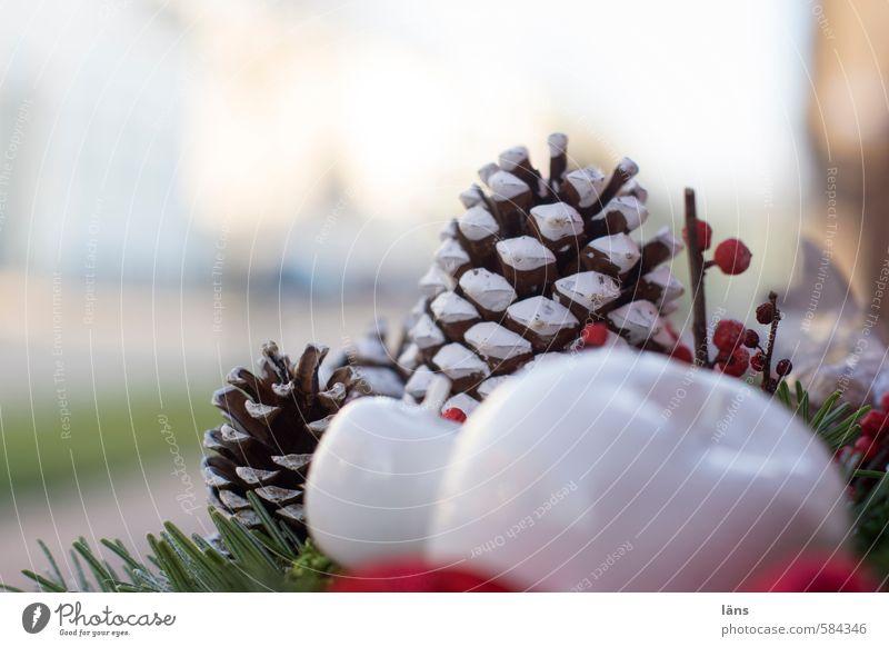 Decoration Creativity Kitsch Apple Fir branch Odds and ends Fir cone Flower arrangement