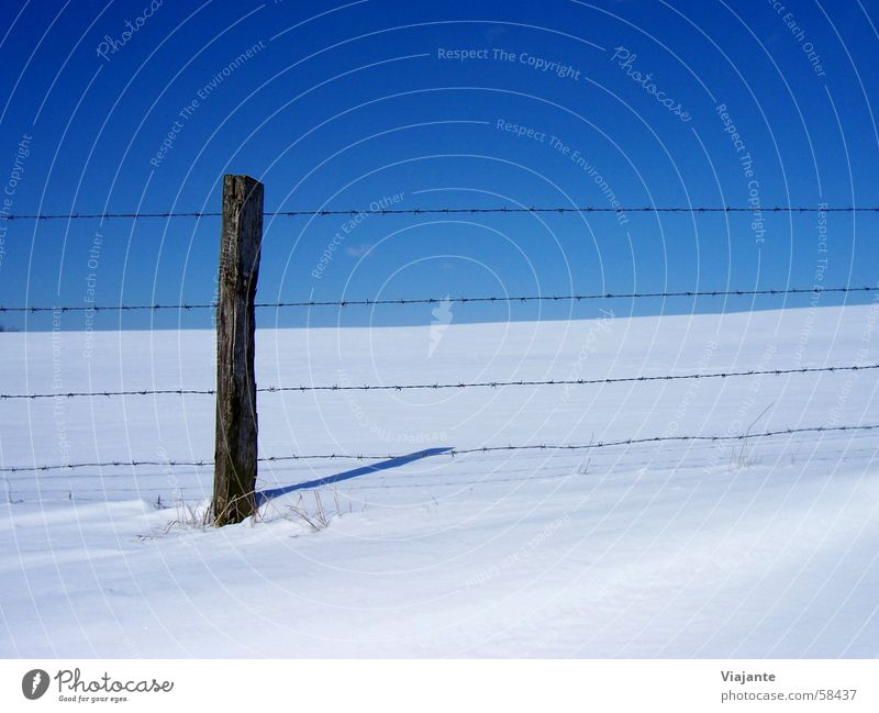 made out Winter Frozen Cold Barbed wire Column Fence Border Captured Horizon Sky Meadow Germany White Background picture Nature Calm icy Snow Pole pile stake