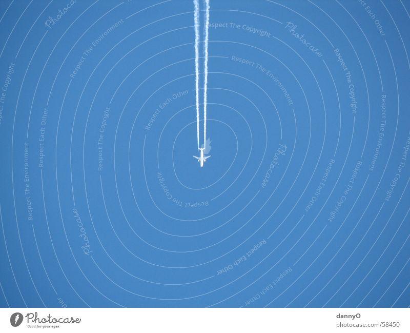 Sky Blue Airplane Stripe