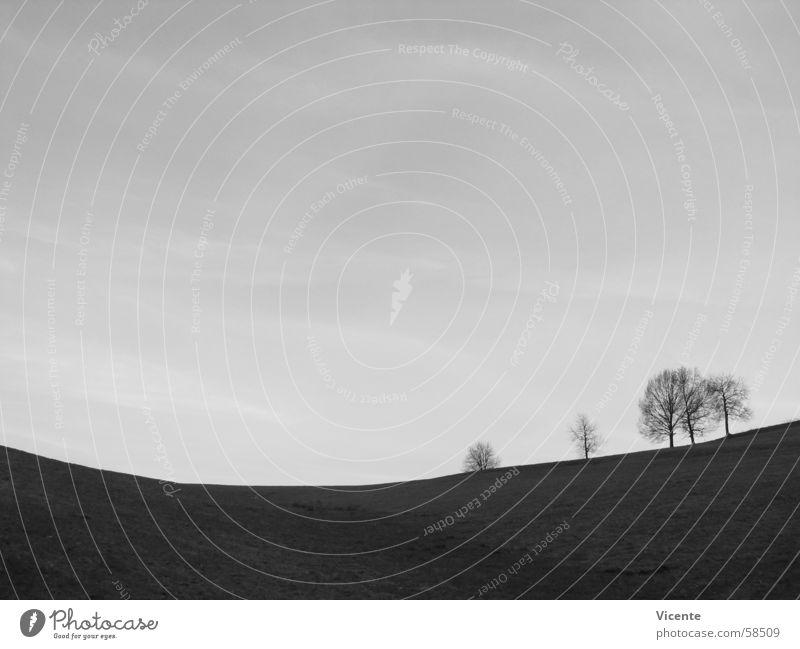 Nature Sky White Tree Black Loneliness Dark Mountain Gray Landscape Bright Valley Arch Cirrus
