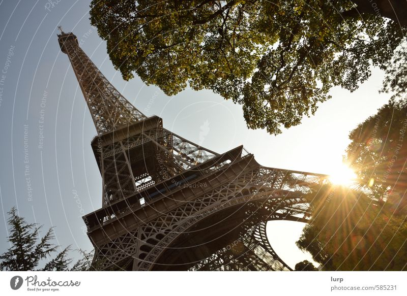 Sky Vacation & Travel City Plant Summer Sun Tree Architecture Beautiful weather Tower Manmade structures Cloudless sky France Paris Landmark Tourist Attraction