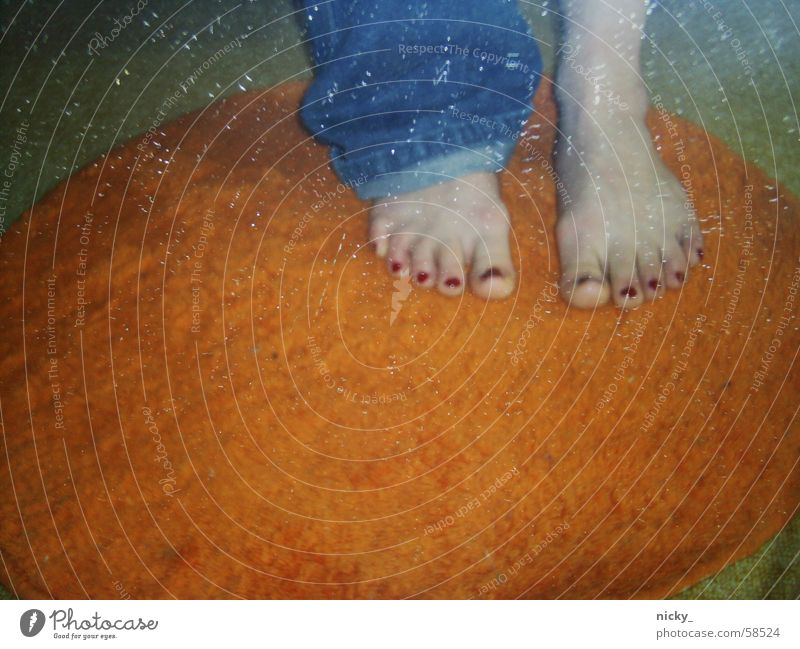 welcome to orange ringum carpet land! Carpet Boredom Orange Feet Jeans red toes all around Circle Blue peach colour for you from me wuuuaa what waaaas Funny