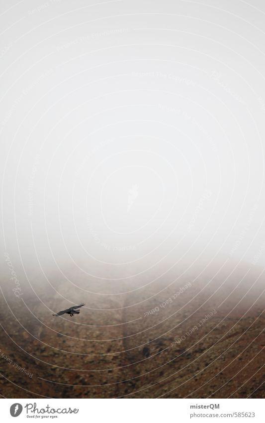 Dark Art Bird Fog Contentment Esthetic Raven birds Shroud of fog Sea of fog Misty atmosphere Patch of fog