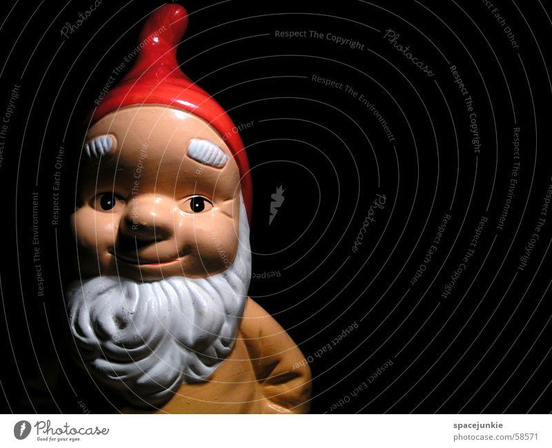 "Dwarf ""Tip"" Garden gnome Santa Claus hat Facial hair Portrait photograph Black Macro (Extreme close-up) Face"