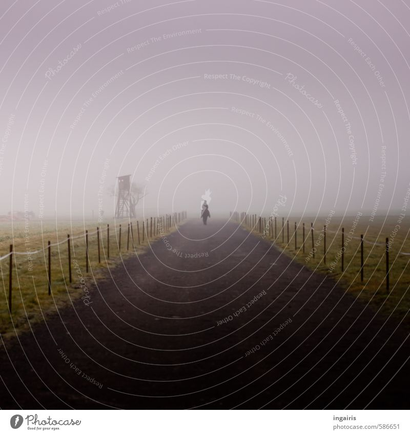Ride into the unknown 1 Human being Landscape Sky Winter Climate Weather Fog Field Lanes & trails Animal Farm animal Horse Movement Infinity Cold Gloomy Gray