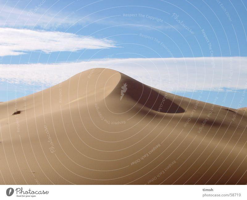Sand Beach dune Morocco Sahara