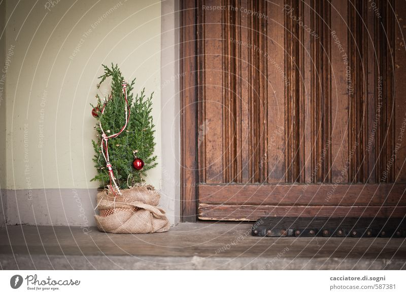 Merry Christmas Christmas & Advent Tree Door Entrance Christmas tree Doormat Simple Friendliness Small Brown Green Anticipation Safety (feeling of) Caution Calm