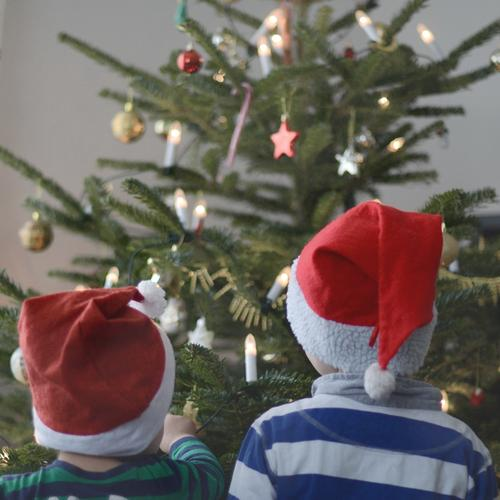 Two gnomes Feasts & Celebrations Christmas & Advent Human being Child Toddler Boy (child) 2 1 - 3 years 3 - 8 years Infancy Winter Tree Cap Emotions Happy