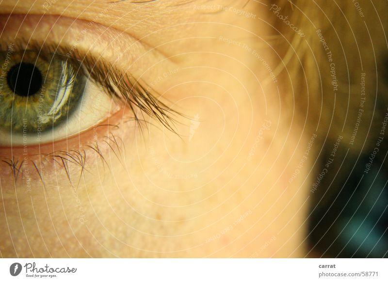 Man White Green Eyes Hair and hairstyles Brown Skin Turquoise Headphones Eyelash Face