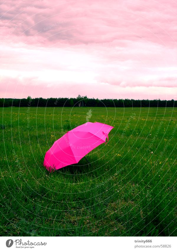 Sky Clouds Relaxation Meadow Dream Pink Umbrella Strange Humor Full Bland Irony
