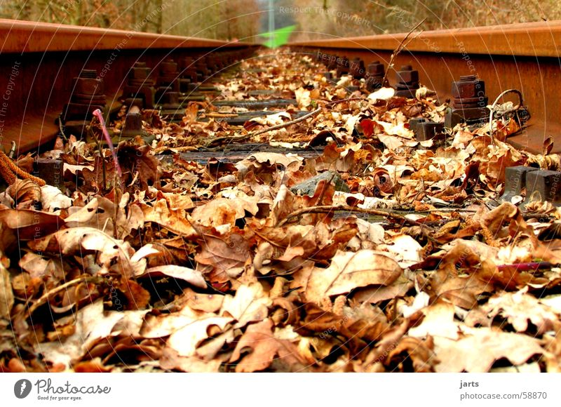 Green Leaf Meadow Transport Railroad Technology Railroad tracks Rust Electrical equipment