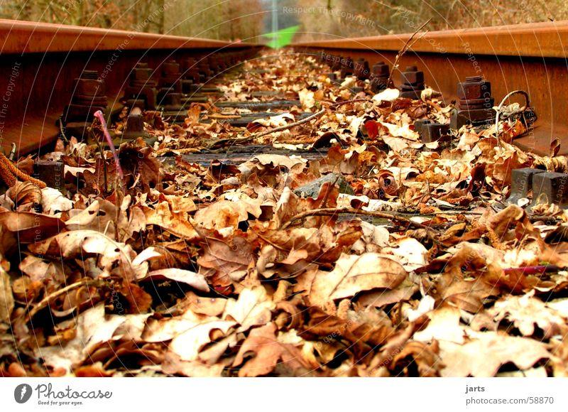 Green Leaf Meadow Transport Railroad Technology Railroad tracks Rust Electrical equipment
