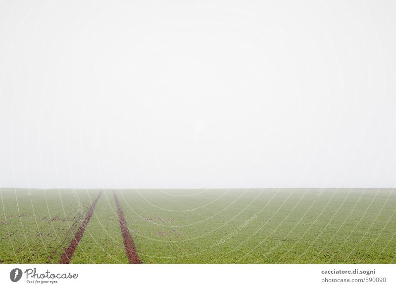 Nature Green White Loneliness Landscape Calm Far-off places Autumn Line Horizon Field Earth Fog Gloomy Free Simple