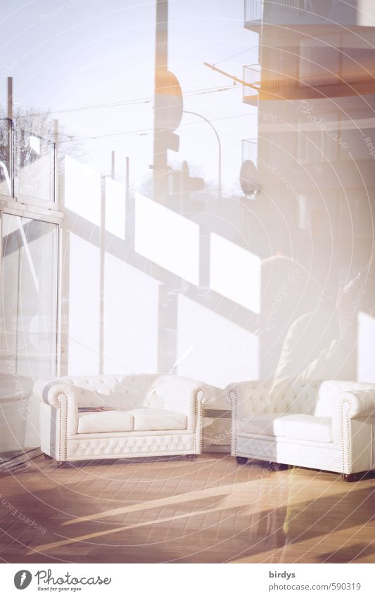 Reflections l outside shines inside Lifestyle Style Design Furniture Sofa Esthetic Elegant Fresh Bright Hip & trendy Positive Luxury Modern Far-off places