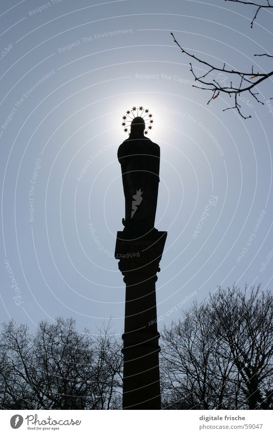 corona Winter Statue Virgin Mary Light Back-light House of worship Duesseldorf Garden Park Sky Column Treetop Star (Symbol) Shadow