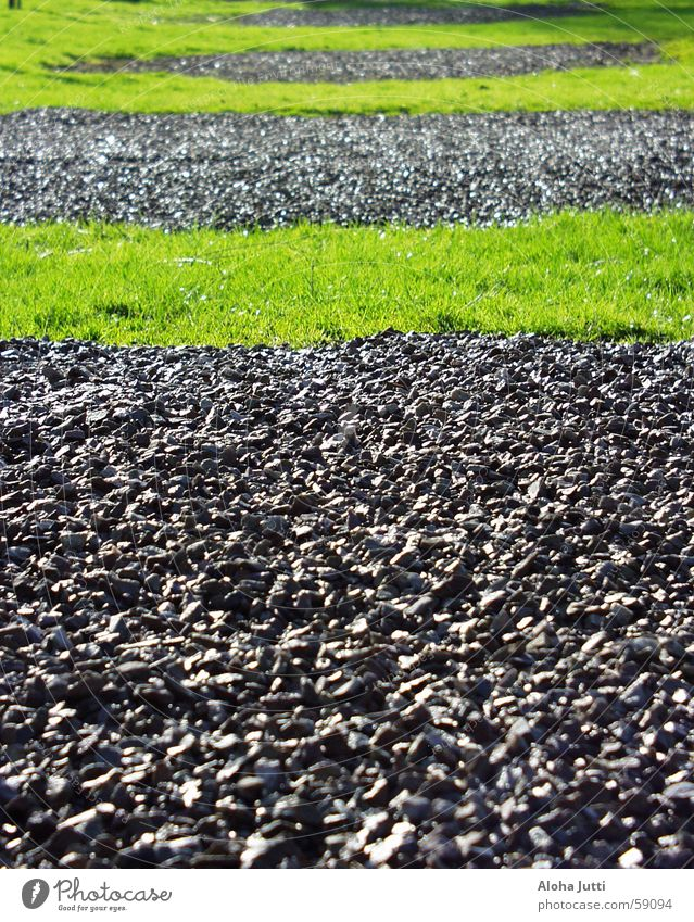 Hmm...? Green Grass Meadow Gray Black Camping site Senheim Spring April 2006 Stripe Stone Lawn Gravel Exterior shot