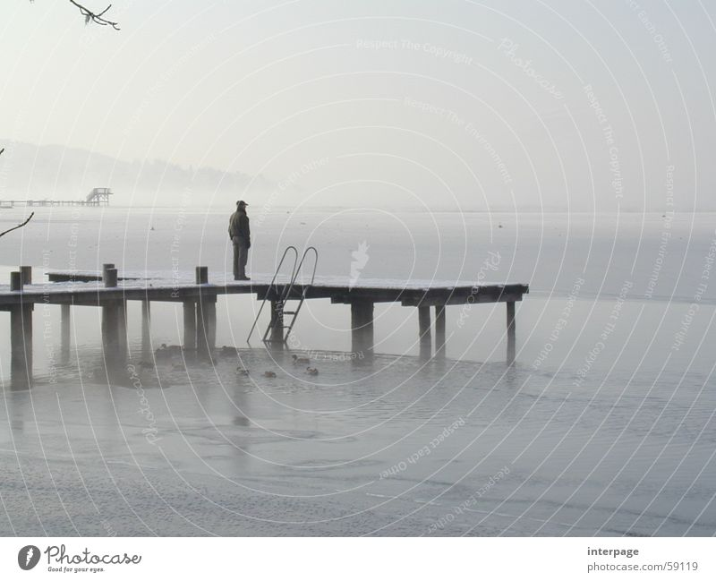 View into the distance Lake Ammer Herrsching am Ammersee Bavaria Man Footbridge Loneliness Far-off places Gray Looking Ice Human being