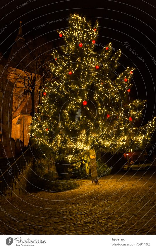 Christmas tree Nature Winter Tree Small Town Downtown Old town Church Christmas & Advent Feasts & Celebrations Dream Wait Yellow Gold Green Orange Red Black