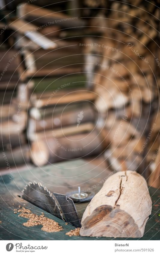 sawmill Factory Brown Silver Saw Wood Saw blade Stack of wood Texture of wood Colour photo Exterior shot Copy Space top Copy Space middle Isolated Image Day