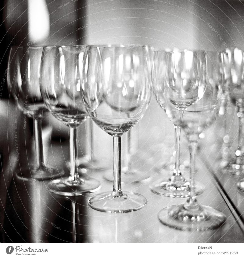 In series Glass Gray Black White Wine glass Reflection Analog Black & white photo Interior shot Copy Space top Artificial light Light Shadow Contrast