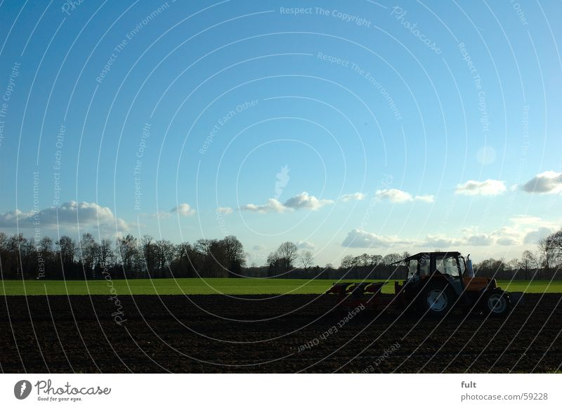 agriculture Agriculture Plow Tractor Field Horizon Tree Clouds Träcker Sky