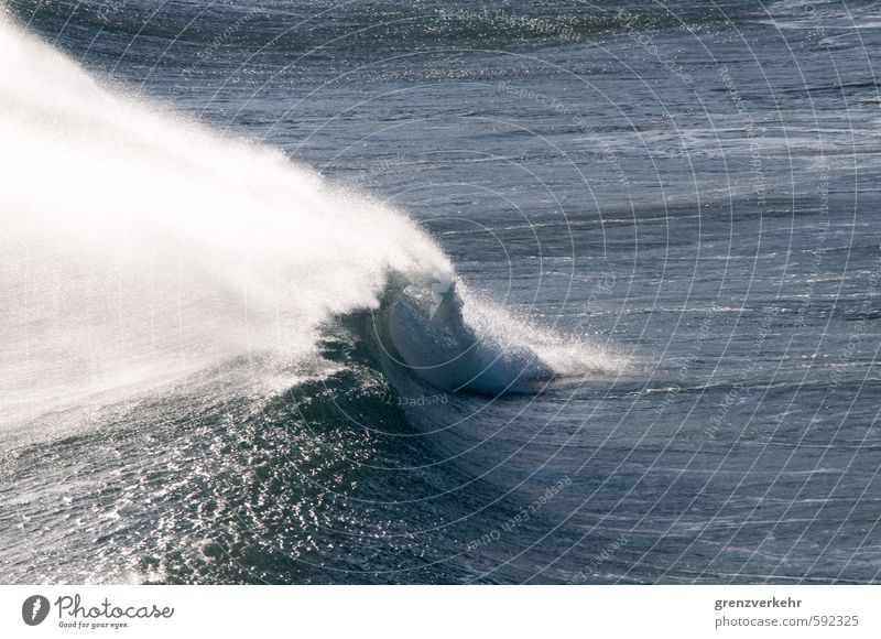 wave monster Water Gale Waves Coast Ocean Mediterranean sea Respect Power Force Roaring Wave break Swell Colour photo Exterior shot Deserted Copy Space right