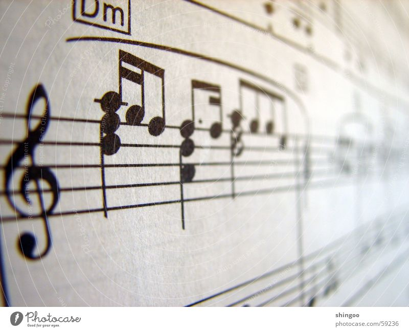 sheet of music Music Piano Musical notes Paper Sign Near Black White Beginning Culture Art Clef Make music Sheet music Black & white photo Subdued colour