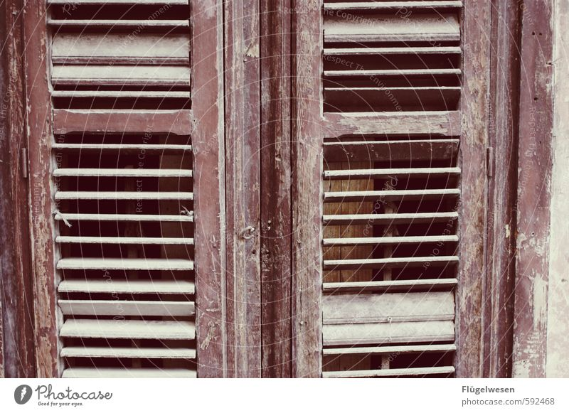 Shutters are in shutters Living or residing Flat (apartment) House (Residential Structure) Dream house House building Redecorate Arrange Safety Car Window
