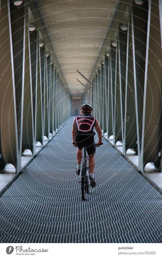 under the bridge Mountain bike Bicycle Bridge Sports
