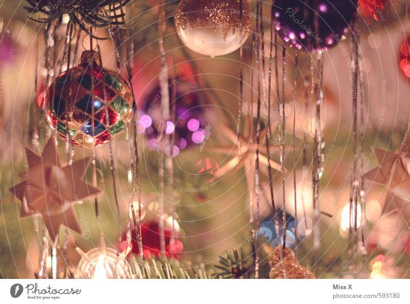 Christmas & Advent Tree Glittering Star (Symbol) Christmas tree Hang Glitter Ball Festive Christmas decoration Fir branch Christmas tree decorations Adorned