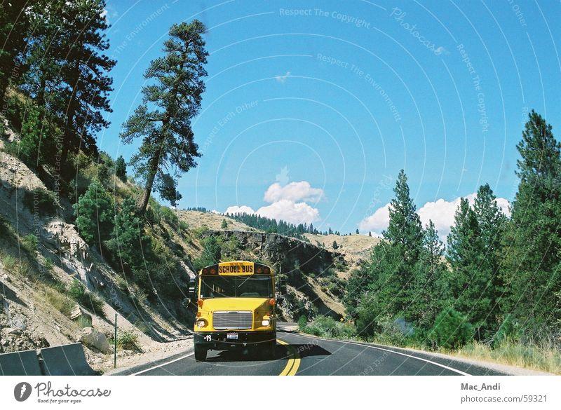 school bus School bus Idaho Street USA