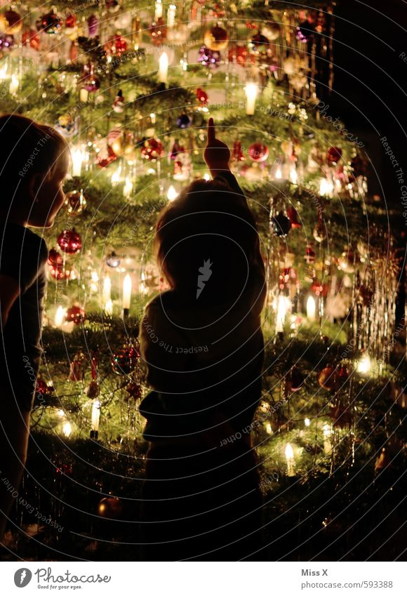 Human being Child Christmas & Advent Tree Emotions Happy Moody Friendship Together Glittering Infancy Illuminate Joie de vivre (Vitality) Curiosity Discover