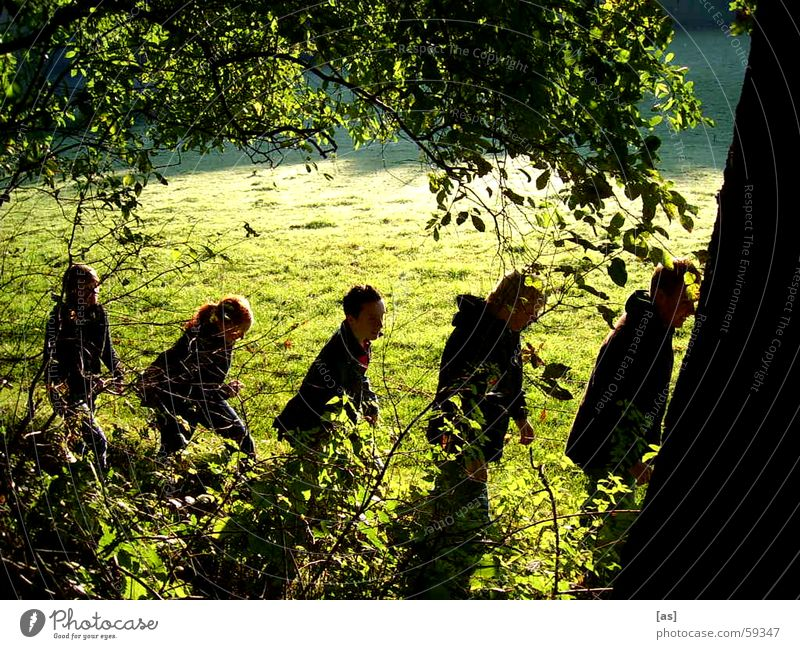 The Companions Friendship Forest Meadow Hiking Tree Gandalf Society Human being stock and stone Vacation & Travel Landscape Frodo of all around