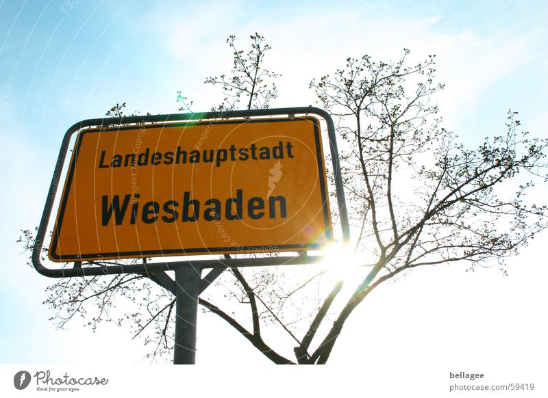 place to be Yellow Wiesbaden Sunbeam White Brown Distinctive Town Blue Sky Signs and labeling sun tree Branch Twig steady Exterior shot