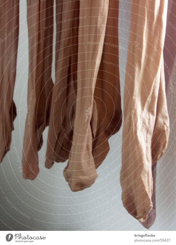 White Wall (building) Legs Feet Brown Stockings Lady Hang Tights Nylon