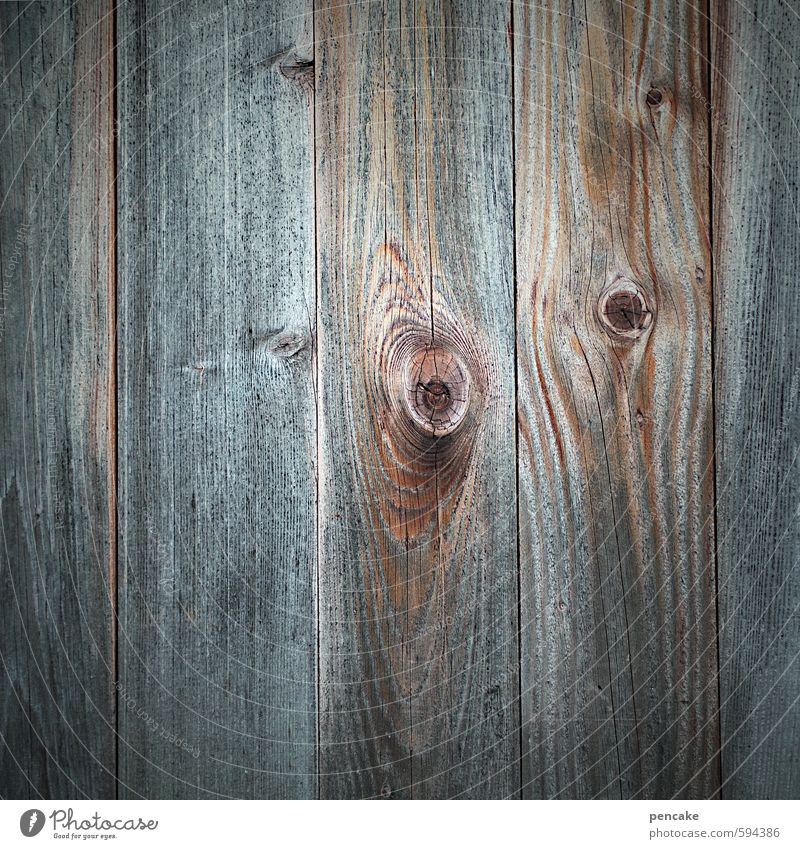 knock on wood Hut Facade Wood Esthetic Uniqueness Naked Thrifty Decline Knothole Blue Brown Gray Sustainability Simple Wooden board Copy Space middle