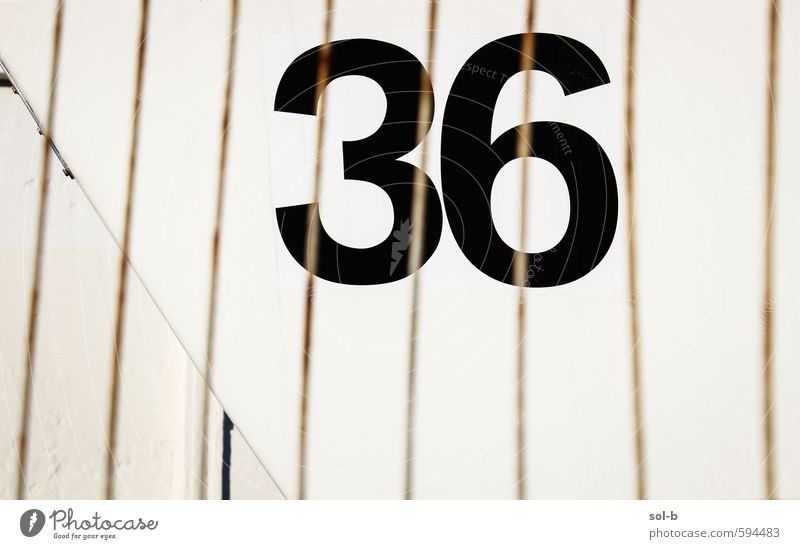 lucky number Style Design Digits and numbers Simple Black Services Fence Gate 36 Line Colour photo Exterior shot Pattern Deserted Copy Space left