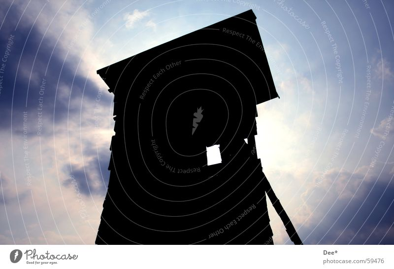 Human being Sky Man Nature Blue White Tree Sun Clouds Black Window Wood Roof Hunting Joist