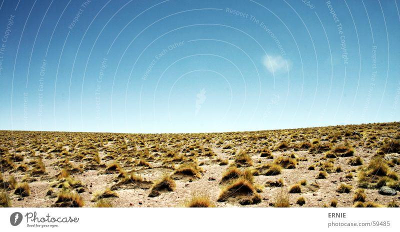Sky White Blue Vacation & Travel Clouds Grass Chile San Pedro de Atacama Lake Miscanti