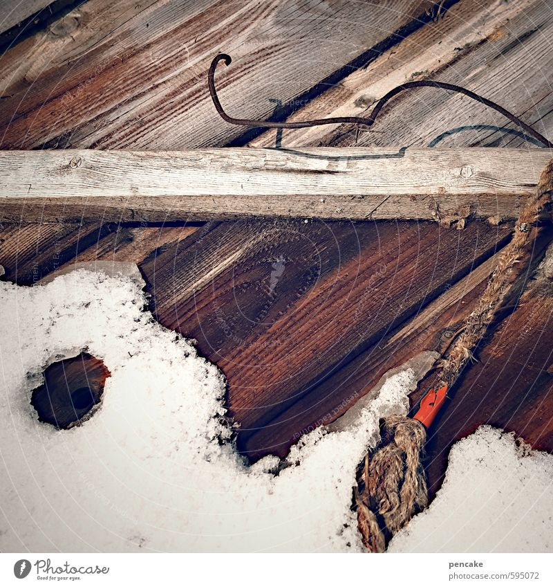 toothless Nature Elements Winter Climate change Snow Wood Water Sign Diet Tug-of-war Wait Rope Wire Retreat Thaw Melt Detail of face Wet Accidental Bite