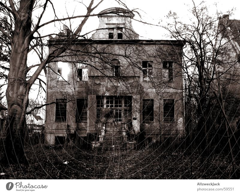 The downfall of the house Usher Villa Derelict Europe Brandenburg Creepy Dark Alarming Grief House (Residential Structure) Ruin Bushes Property Loneliness